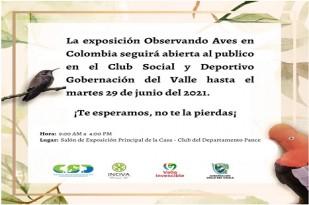 noticias-destacadas/la-exposicion-observando-aves-en-colombia-seguira-en-el-club-de-empleados-del-departamento-hasta-el-29-de-junio