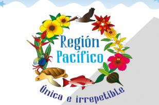 noticias-destacadas/region-pacifico--unica-e-irrepetible-------nueva-exposicion-de-inciva-el-museo-de-ciencias-naturales