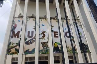 noticias-destacadas/el-museo-de-ciencias-naturales-en-la-ruta-de-los-museos-de-la-feria-de-cali